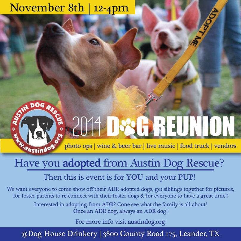 Austin Dog Rescue Reunion
